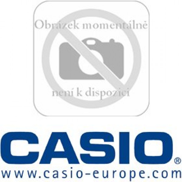 CASIO DT 5057 CF